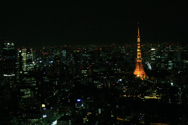 도쿄 야경 훔쳐보기!