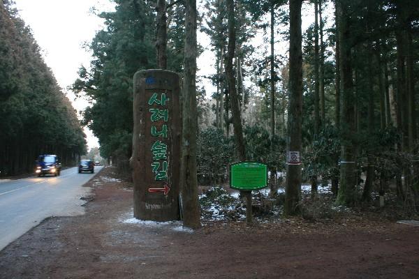 느랏느랏, 촌촌이 숲길 걷기