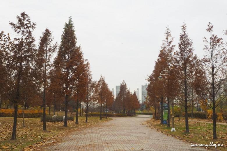 안산호수공원_002