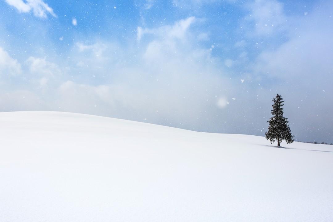 홋카이도001_20848365.jpg
