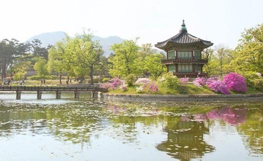 봄날의 궁궐 산책, 경복궁 함께 걷기