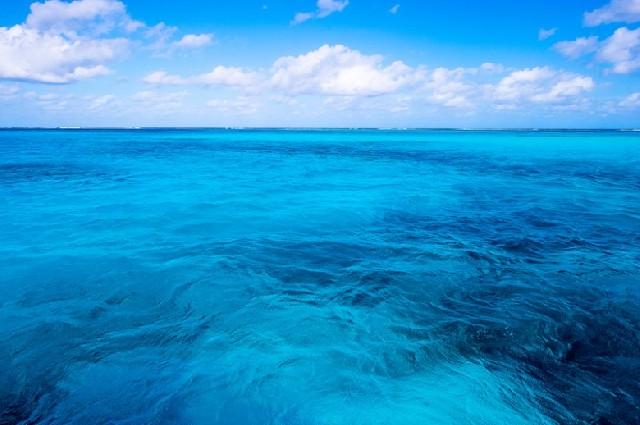 하파다이 사이판! 한없이 투명한 블루