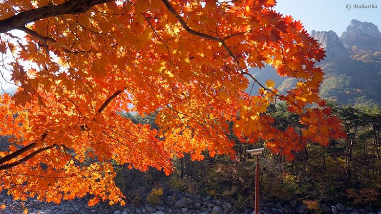 바다에도 산에도 가을이 들었구나, 설악과 속초바다