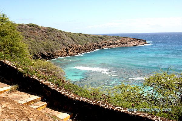 하와이에서 거북이를 만나는 방법, 하나우마베이 스노클링!