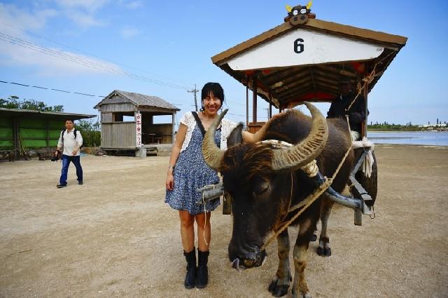일본 최남단, 이시가키에서 꼭 해야할 것 3가지