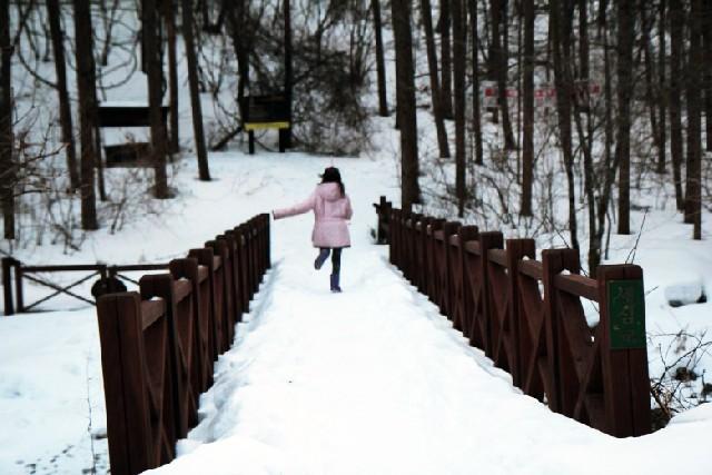 한겨울의 태백, 시작을 찾아가다