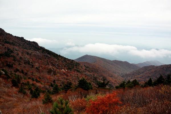 [포토 에세이] 가을, 지리산에 오르다