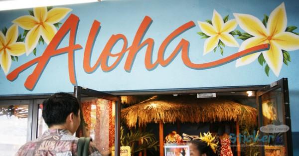 하와이에서 훌라훌라~ 전통춤 배우기!