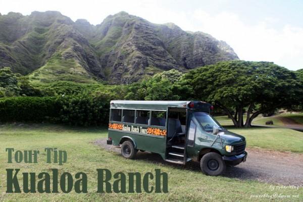 하와이 쿠알로아 랜치 즐기기!