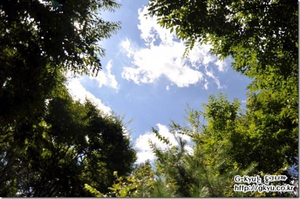 도심 속으로 떠나는 가을 남자의 소풍- #2. 상암 월드컵 공원