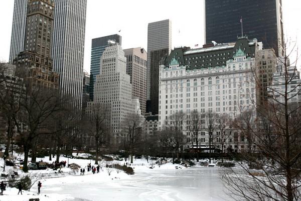 뉴욕, 눈오는 겨울 날의 센트럴파크를 찾다