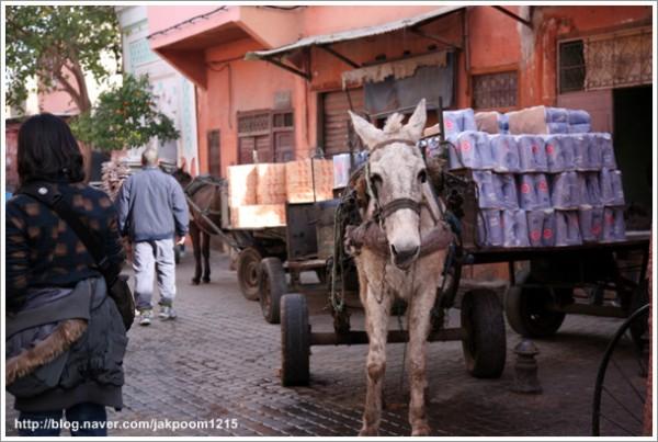 아프리카 모로코의 신비로운 시장, 마라케시 '제마 엘프나 광장'