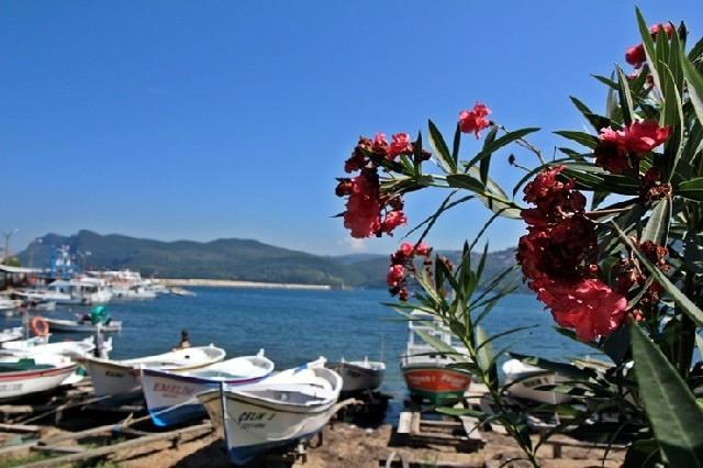 터키, 바닷가 마을 아마스라 골목길 여행