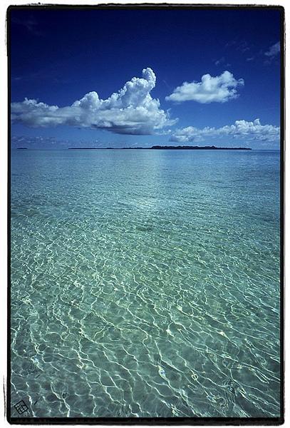 Follow Palau!
