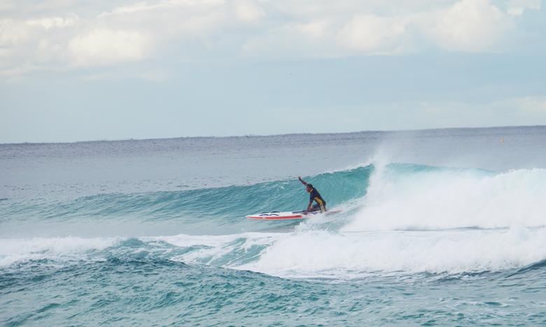 골드코스트에서 구르고 구르며 서핑을 배우다!