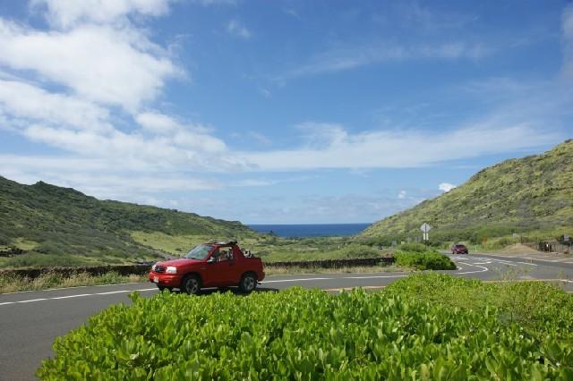우리 가족의 하와이 이야기, 그 첫번째 사연!
