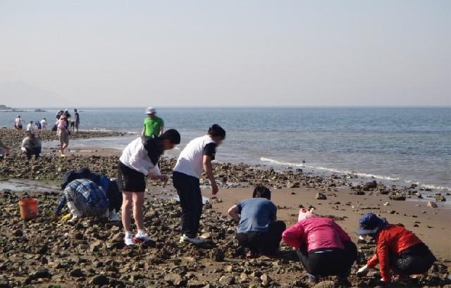 동심으로의 여행, 국화도 바다체험