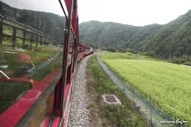우리 양원역 전망대까지 달려볼까? :: V트레인 백두대간협곡열차