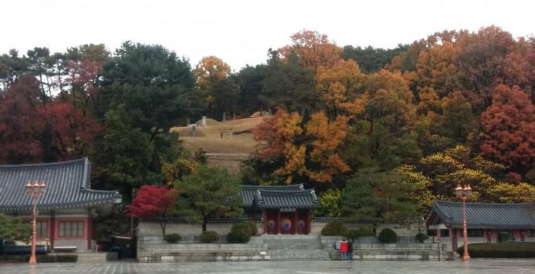 한국의 센트럴 파크, 분당 중앙공원