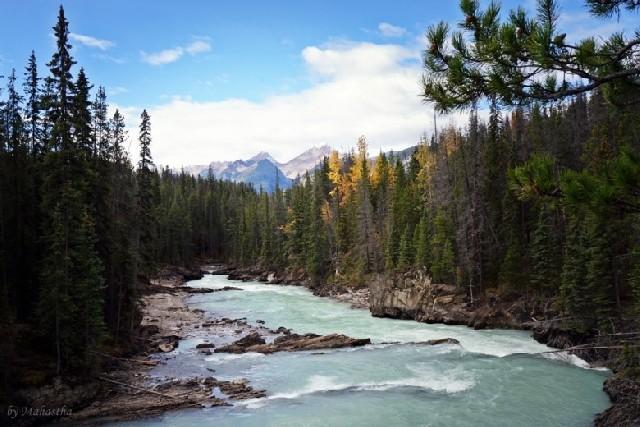 경이로운 캐나다 국립공원! 요호국립공원 핵심 명소