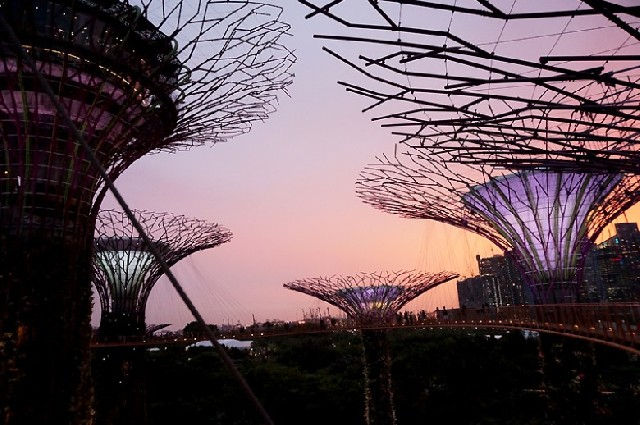 싱가포르를 의미있게 여행하는 방법