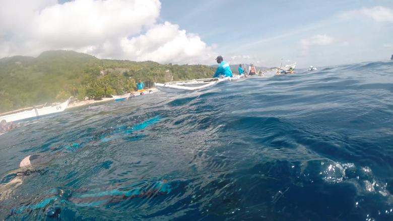 세부 오슬롭에서 고래상어와 유영을!
