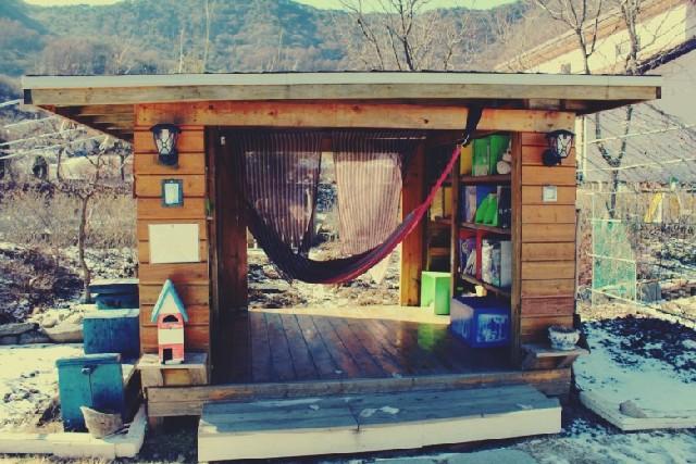 숲 속 작은 책방으로 떠나는 독서 여행