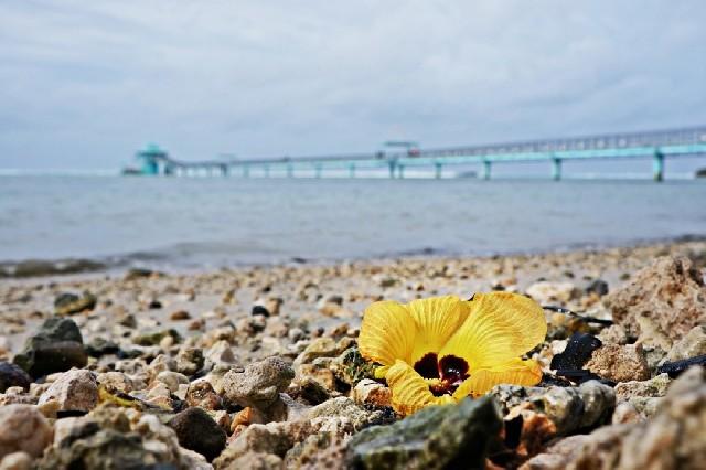 괌 남부여행의 핵심스팟
