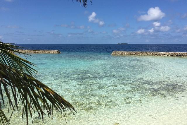 지상의 천국, 몰디브에서 진정한 휴식을 느끼다.