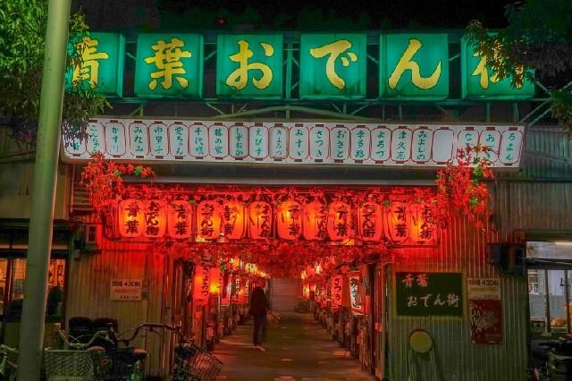 야밤에 떠나는 미식 기행, 시즈오카 아오바 오뎅거리