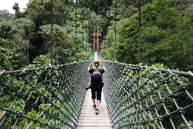 정글 투어 입문기, 울루 템부롱 국립공원!