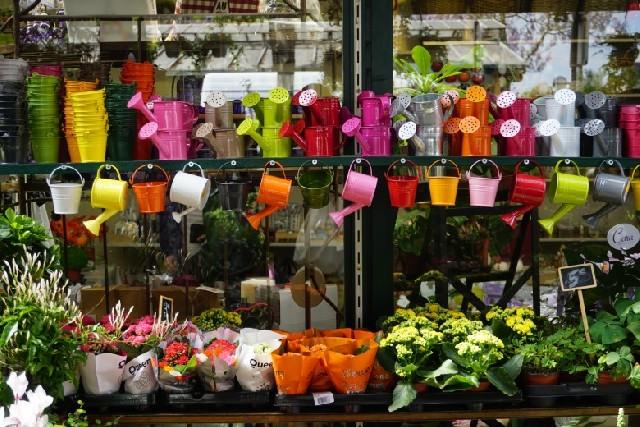 파리 도심 속 정원, 파리 꽃 시장