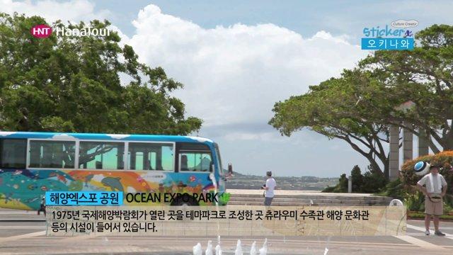 [일본] 세계에서 2번째로 큰 오키나와 츄라우미 수족관