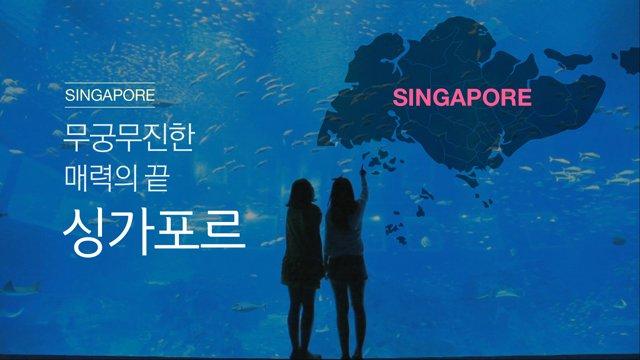 [싱가포르] 신나는 즐길거리 가득한 싱가포르 여행