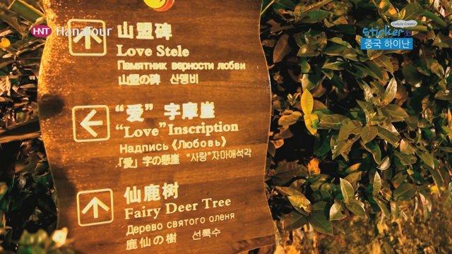 [중국] 하이난의 아름다운 야경, 나이트투어 (녹회두,대동해)