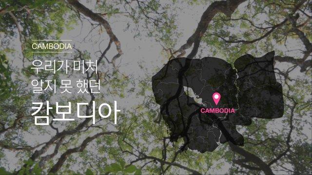 [캄보디아] 자연과 역사의 흔적을 느낄 수있는 씨엠립