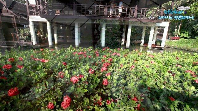[태국] 미술품 애호가 춤붓왕비의 저택, 방콕 수안파카드궁전