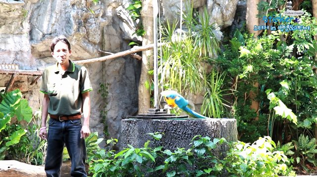 [태국] 태국 최대의 라이브 동물원, 방콕 카오키여우 동물원