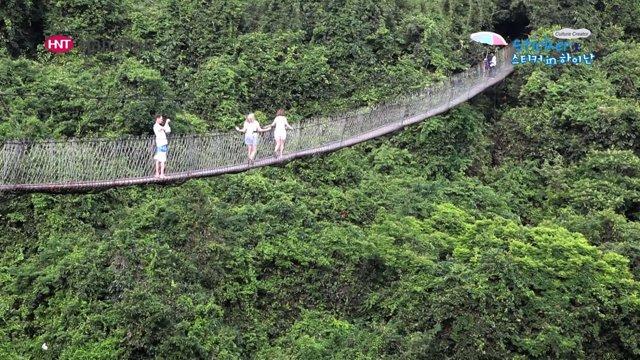 [중국] 다양한 열대우림 식물이 있는 하이난의 열대천당 삼림공원
