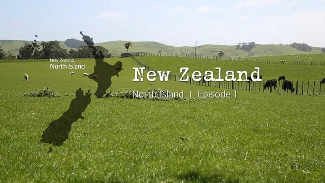 뉴질랜드 북섬 1